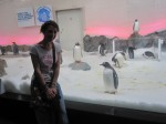 Me at the penguin section of the Melbourne Aquarium