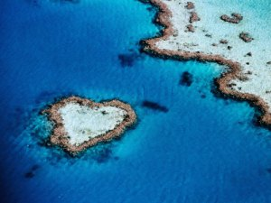 Heart Shaped Reef, Whitsunday Islands